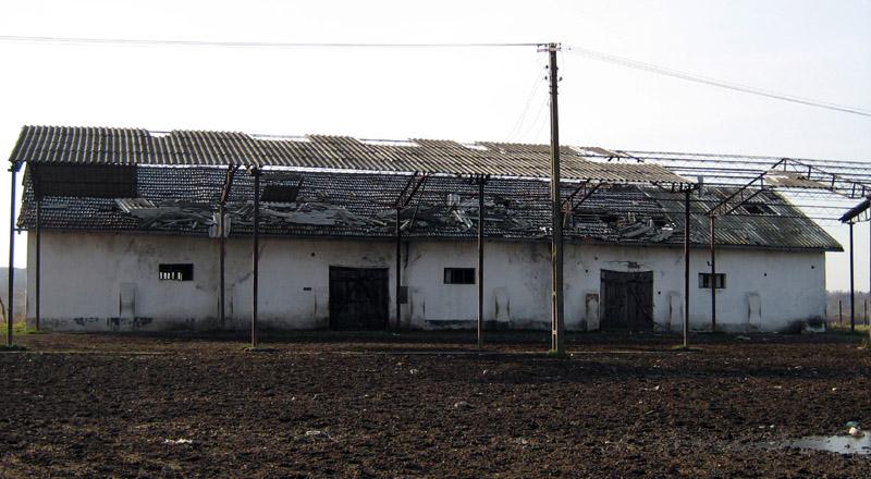 Satul Pausa, judetul Bihor - locul primilor 6 ani din viata