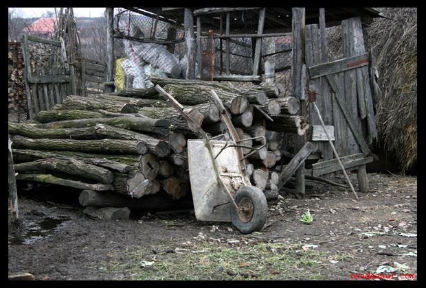 lemne1.jpg